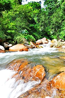 Fresh mountain streams so clean and pure, you can practically drink the water