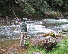 Upstream downpours make for productive fly-fishing if you know where to look